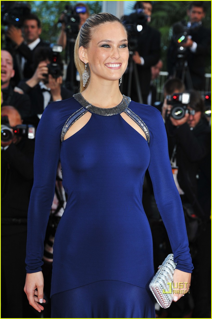 bar refaeli beaver premiere cannes 04