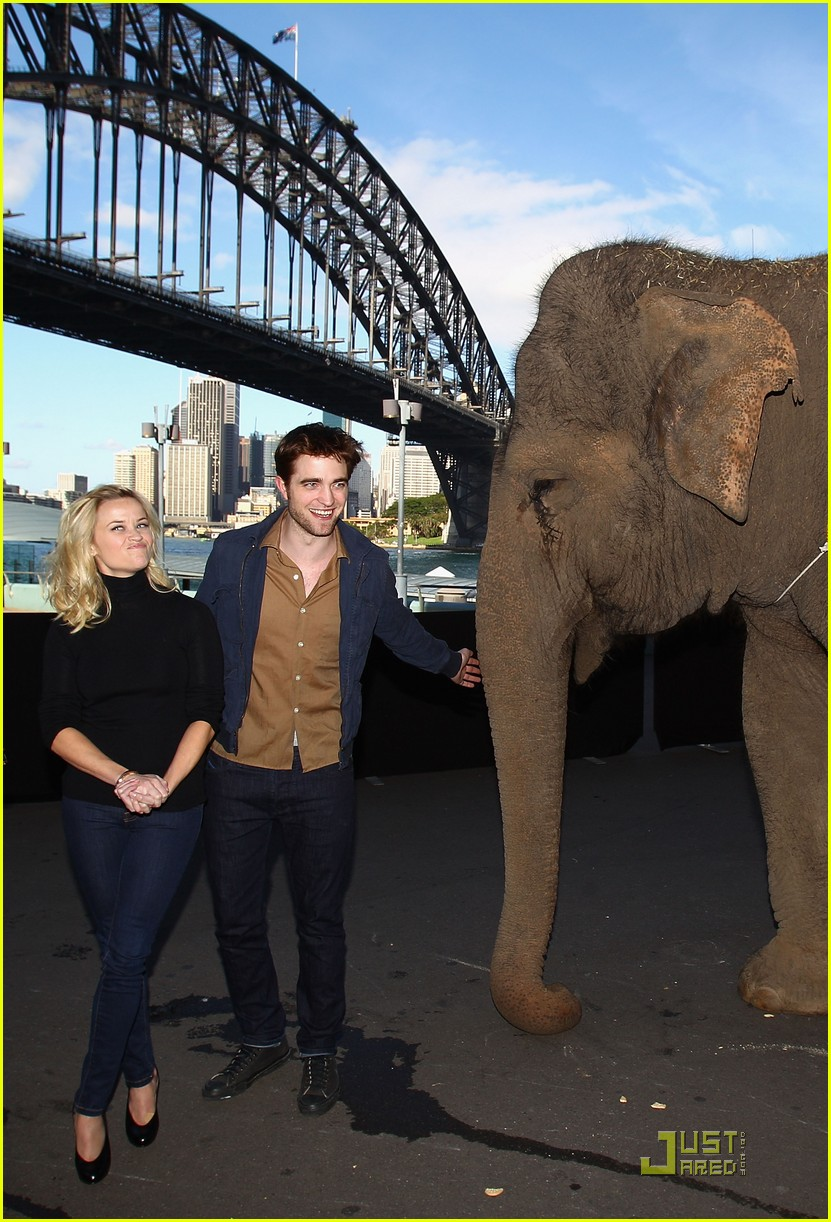 reese witherspoon elephants sydney press conference 03