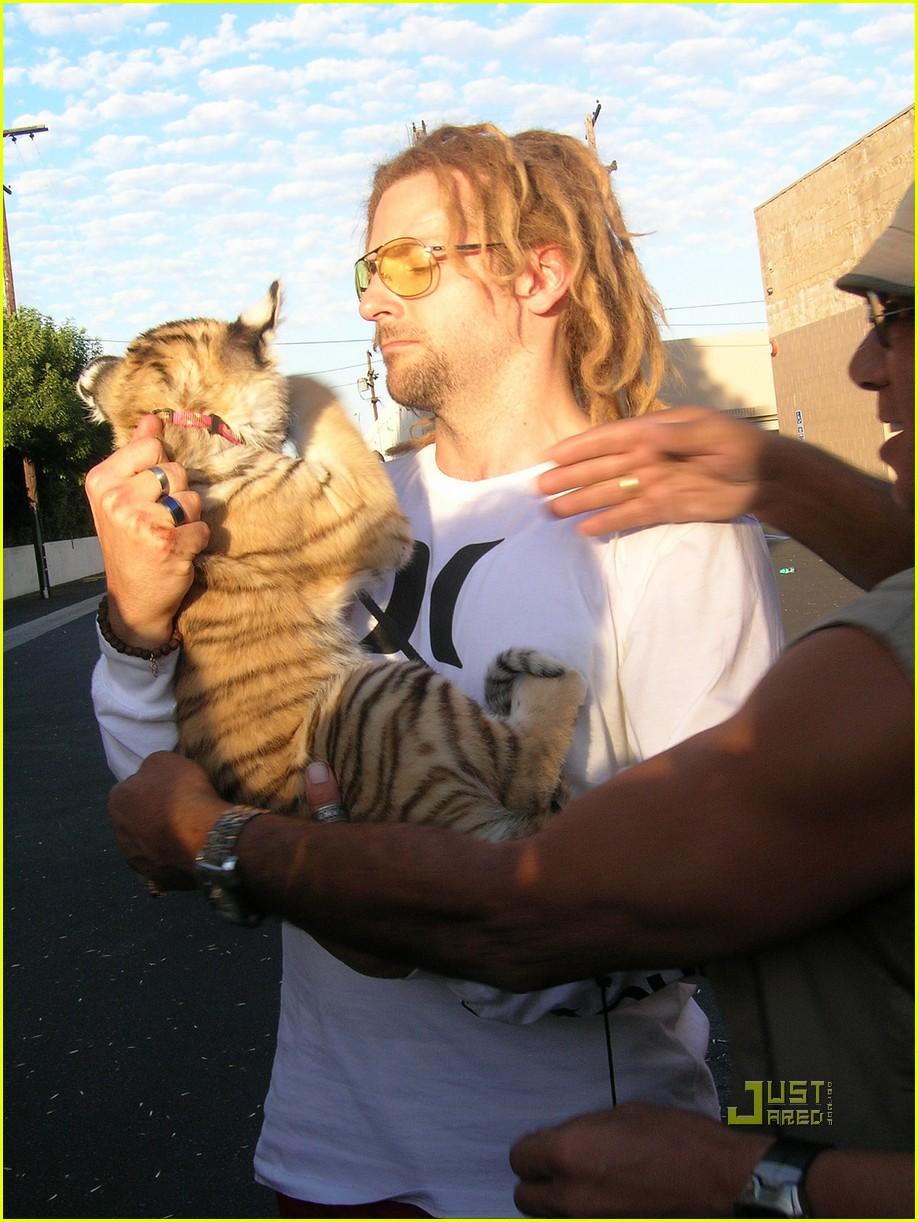 bradley cooper dreadlocks tiger cub 06