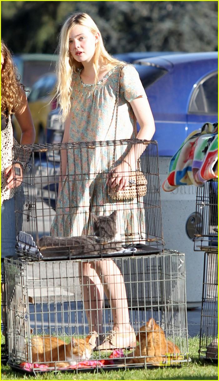 elle fanning kittens adoption 022577270