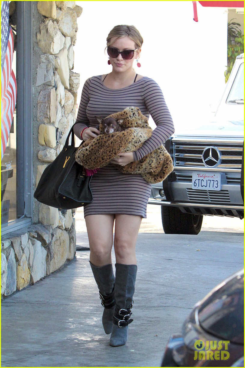hilary duff dog vet 04