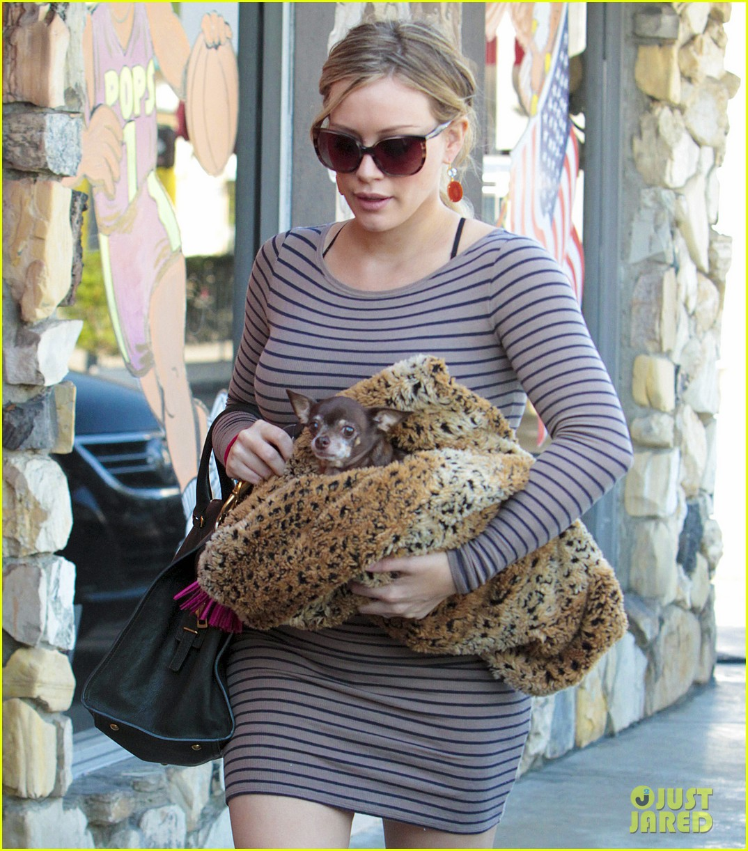 hilary duff dog vet 11