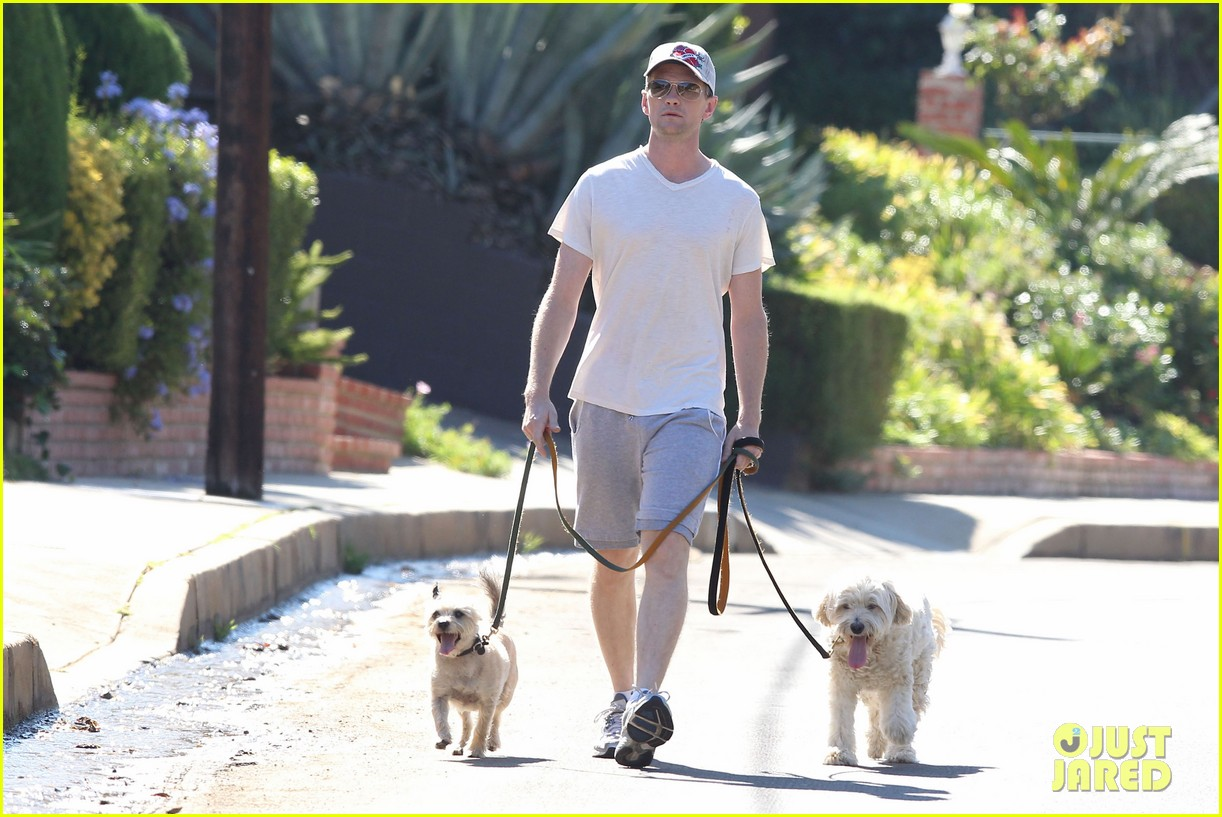 neil patrick harris dog walking 04