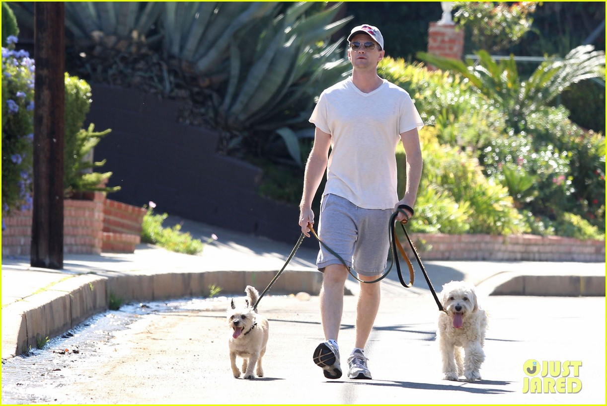 neil patrick harris dog walking 082585970