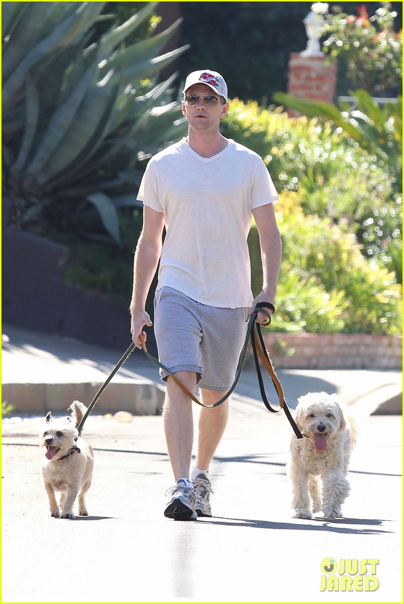 neil patrick harris dog walking 092585971