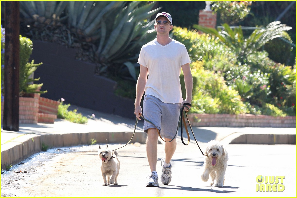neil patrick harris dog walking 122585974