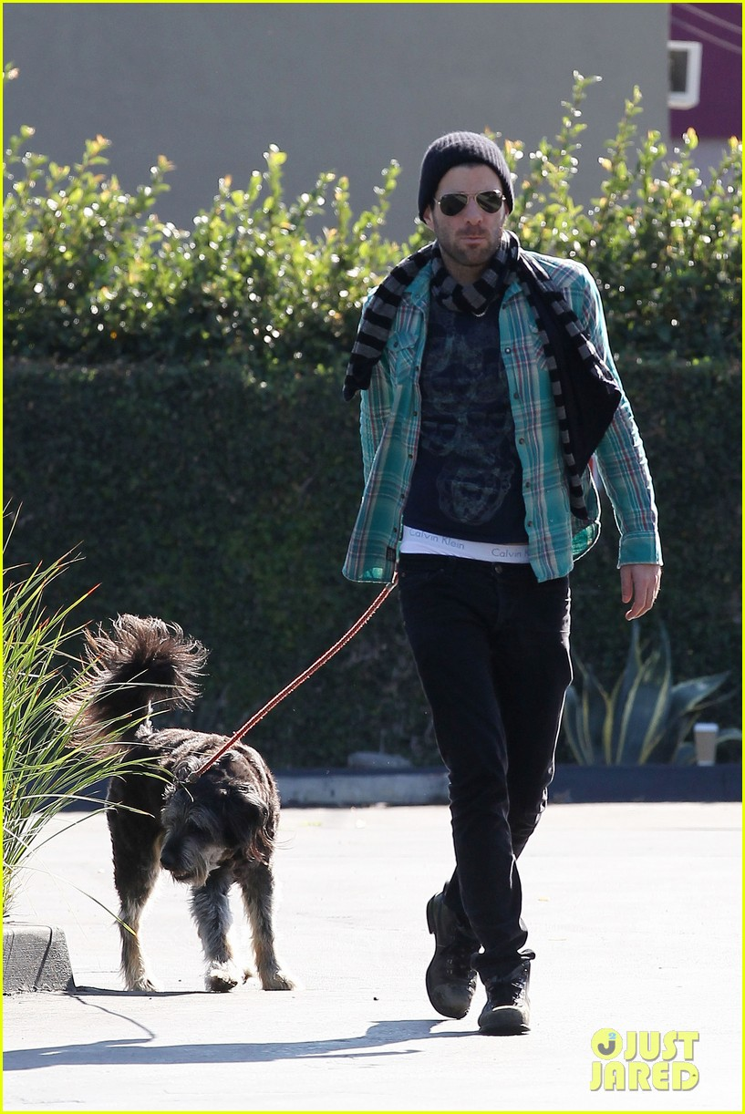 zachary quinto walks dog 25