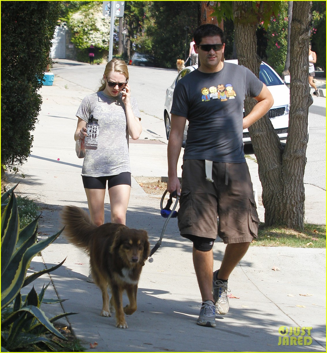 amanda seyfried dog walk friend 03