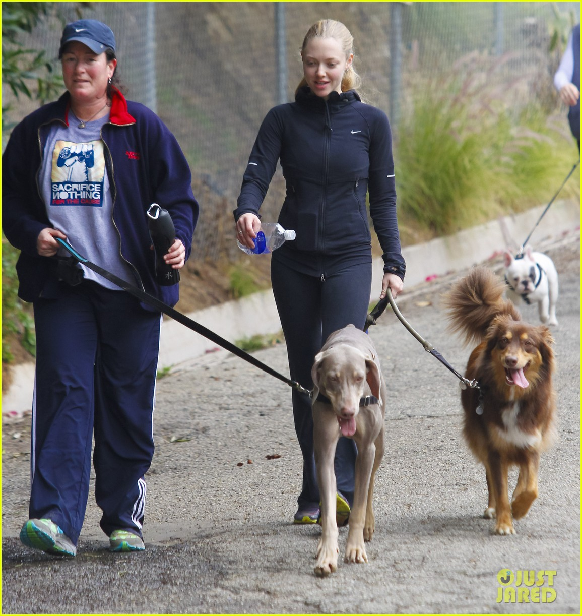 amanda seyfried hike finn 072603897