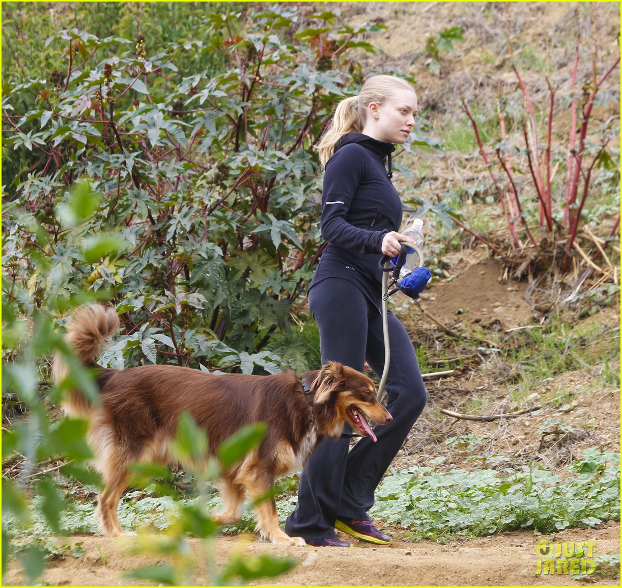 amanda seyfried hike finn 122603902