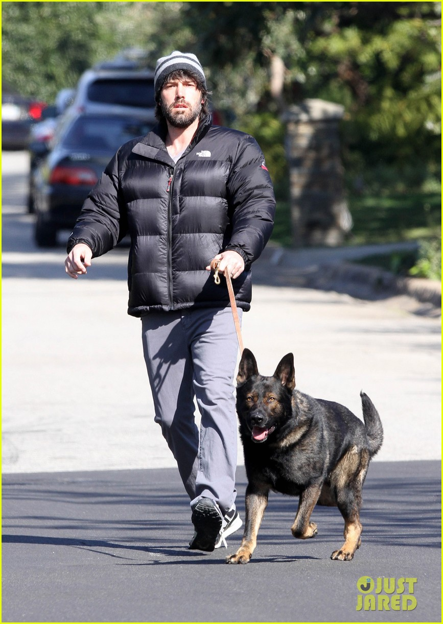 jennifer garner pregnant errands ben affleck walking dog 042621523