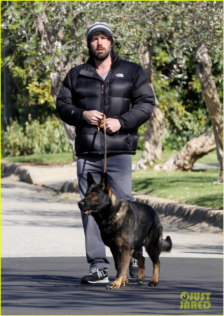 jennifer garner pregnant errands ben affleck walking dog 112621530