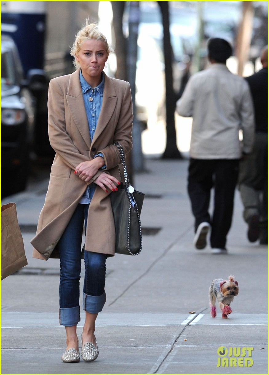 amber heard spy day with pink pooch 012642877
