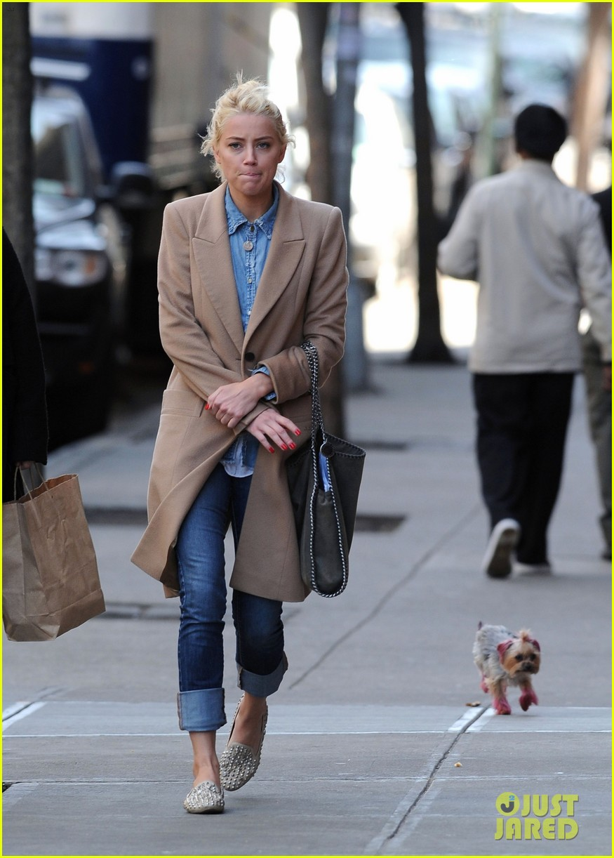 amber heard spy day with pink pooch 042642880