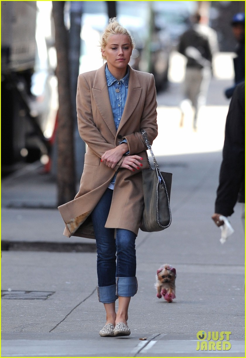 amber heard spy day with pink pooch 062642882