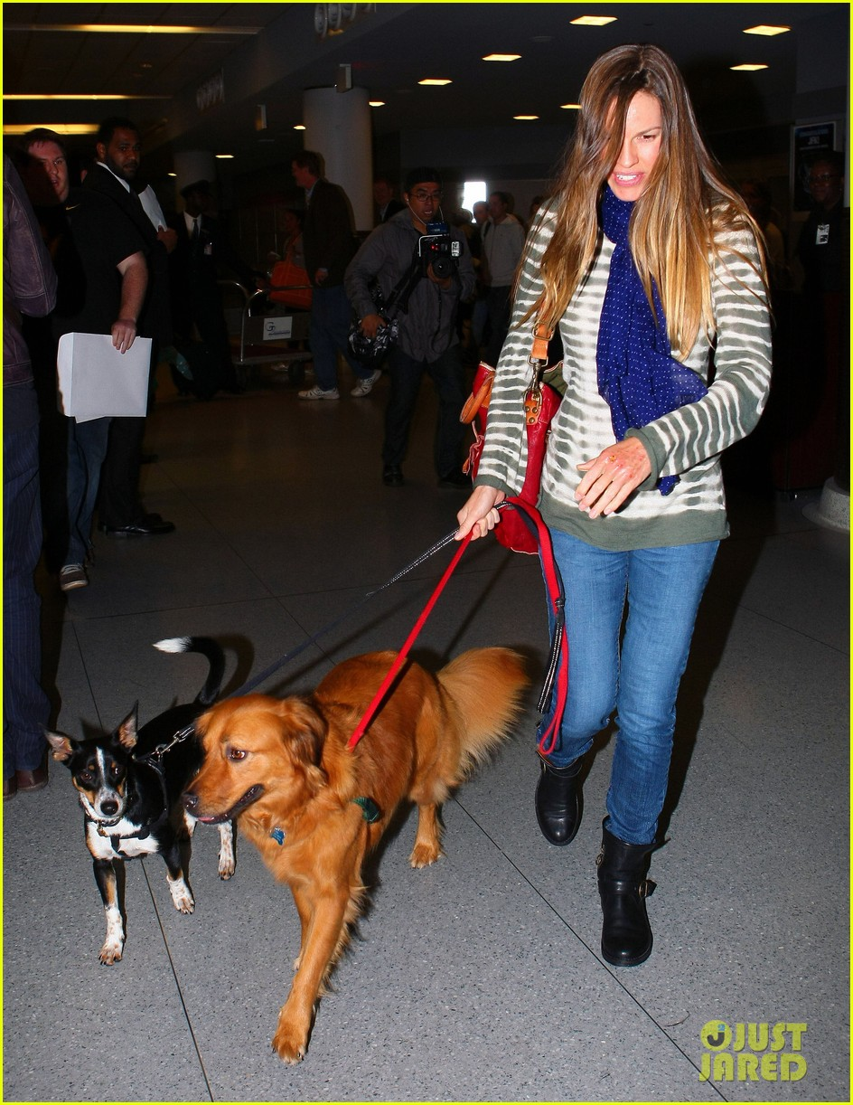 hilary swank dogs at airport 10