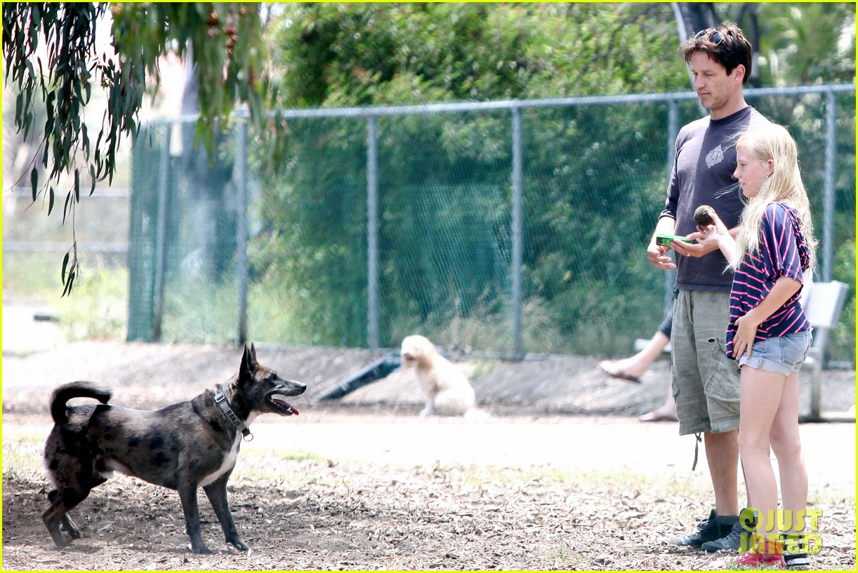stephen moyer walking dogs with lilac 092669934