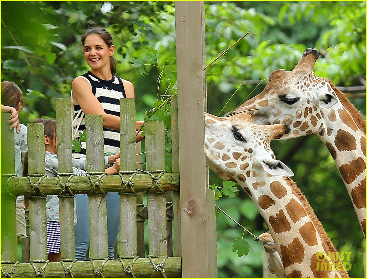 Katie Holmes Suri Feed Giraffes At The Bronx Zoo Photo 2693510