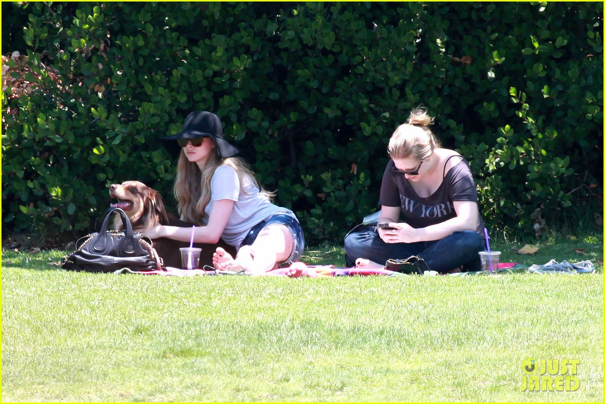 amanda seyfried park with flynn 062682816