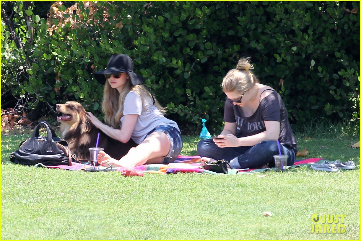 amanda seyfried park with flynn 082682818