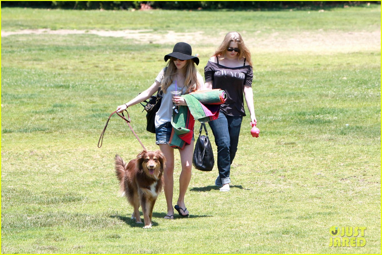 amanda seyfried park with flynn 112682821