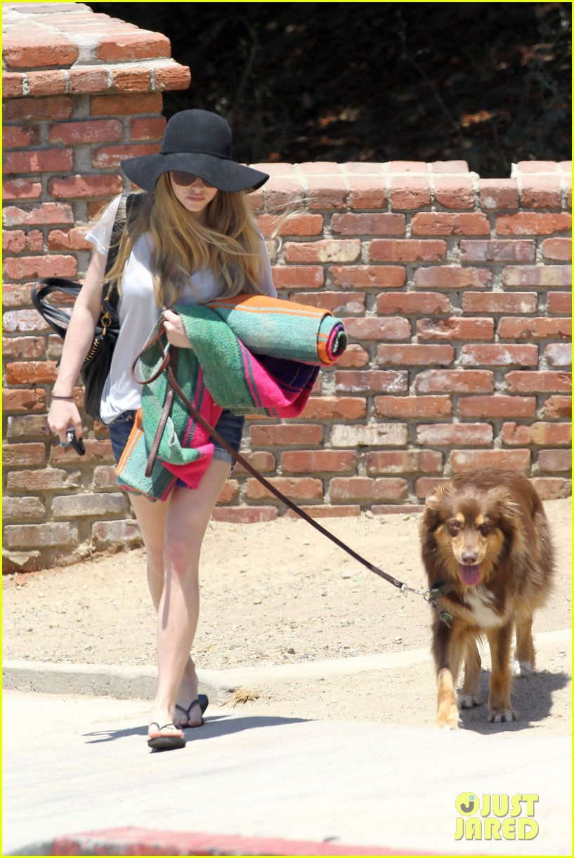 amanda seyfried park with flynn 192682829