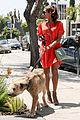 eva mendes beverly hills dog walker 12