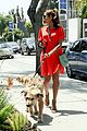 eva mendes beverly hills dog walker 14