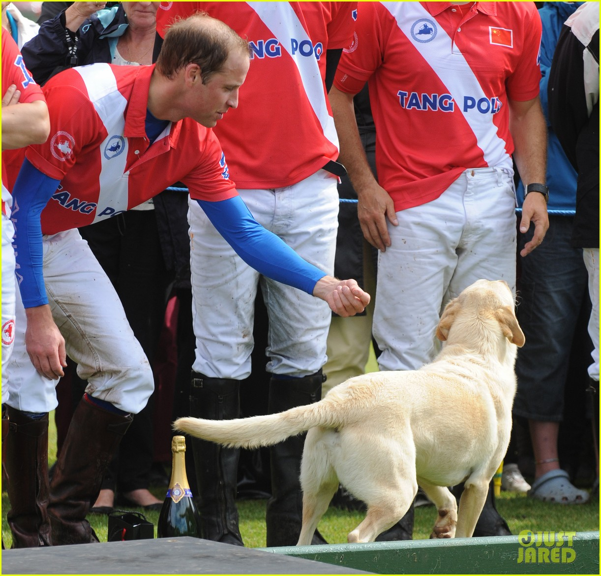prince harry william charity polo match 07