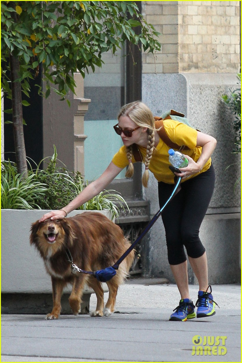 amanda seyfried catches flight 042703731