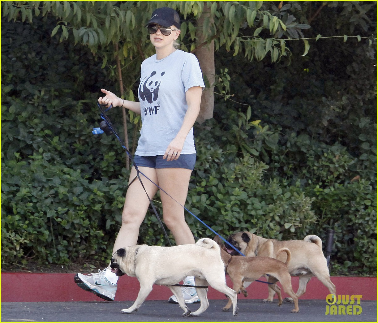 anna faris chris pratt strolling with baby jack 292730487