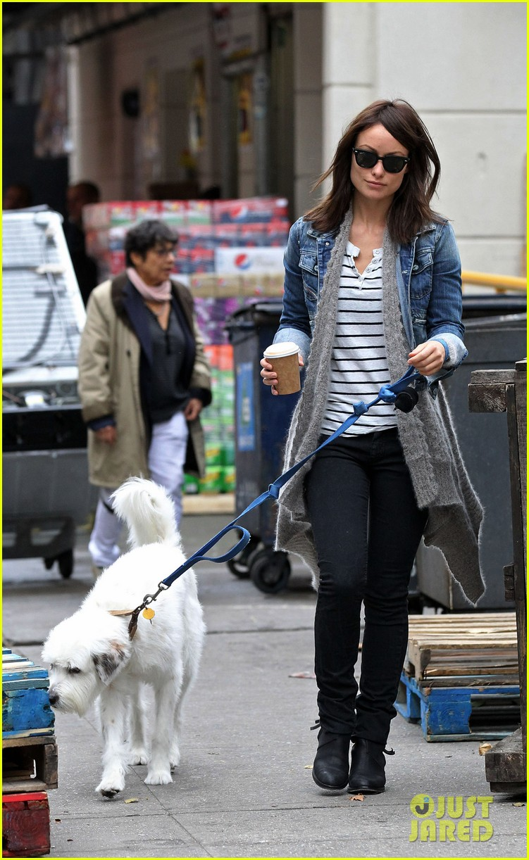 olivia wilde new york stroll with paco 07