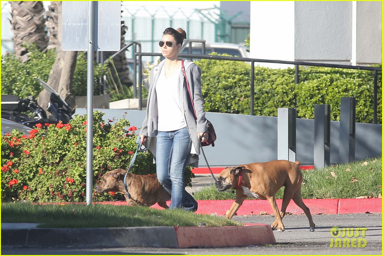 jessica biel dog walk before private plane departure 052762346
