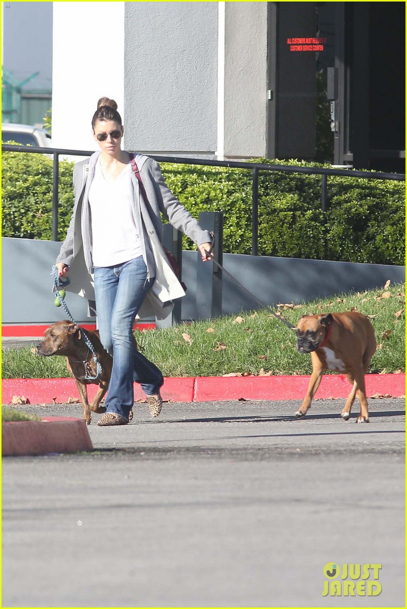 jessica biel dog walk before private plane departure 062762347