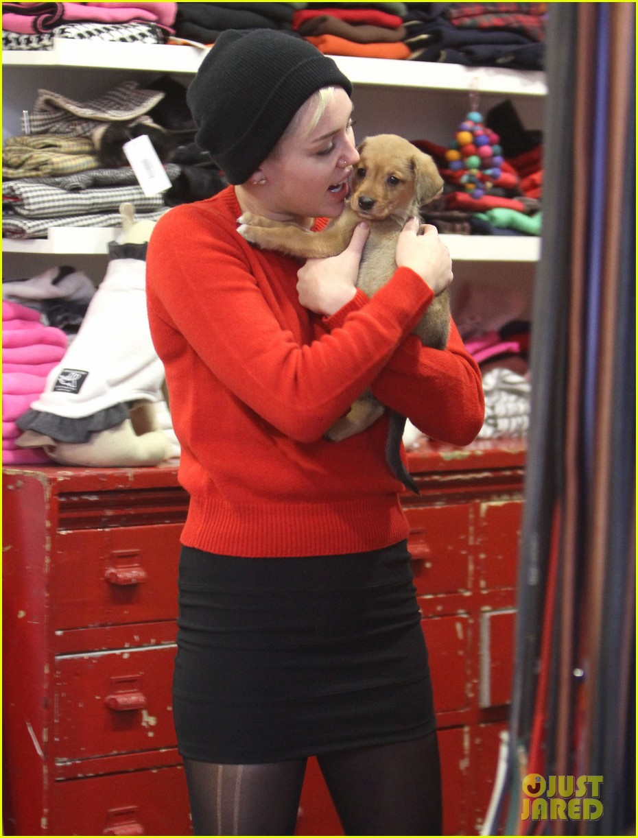 miley cyrus introduces new pup penny lane 212764534