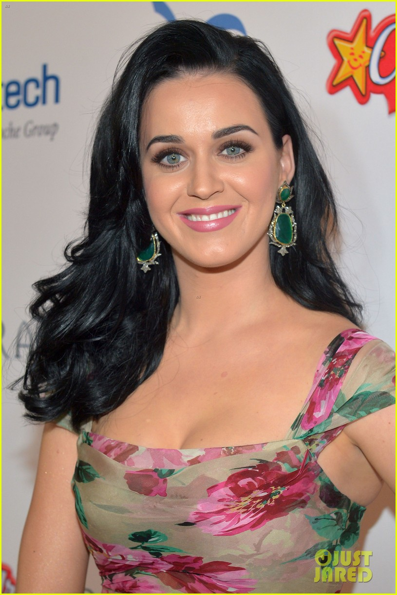 katy perry dream foundation celebration of dreams 022759245