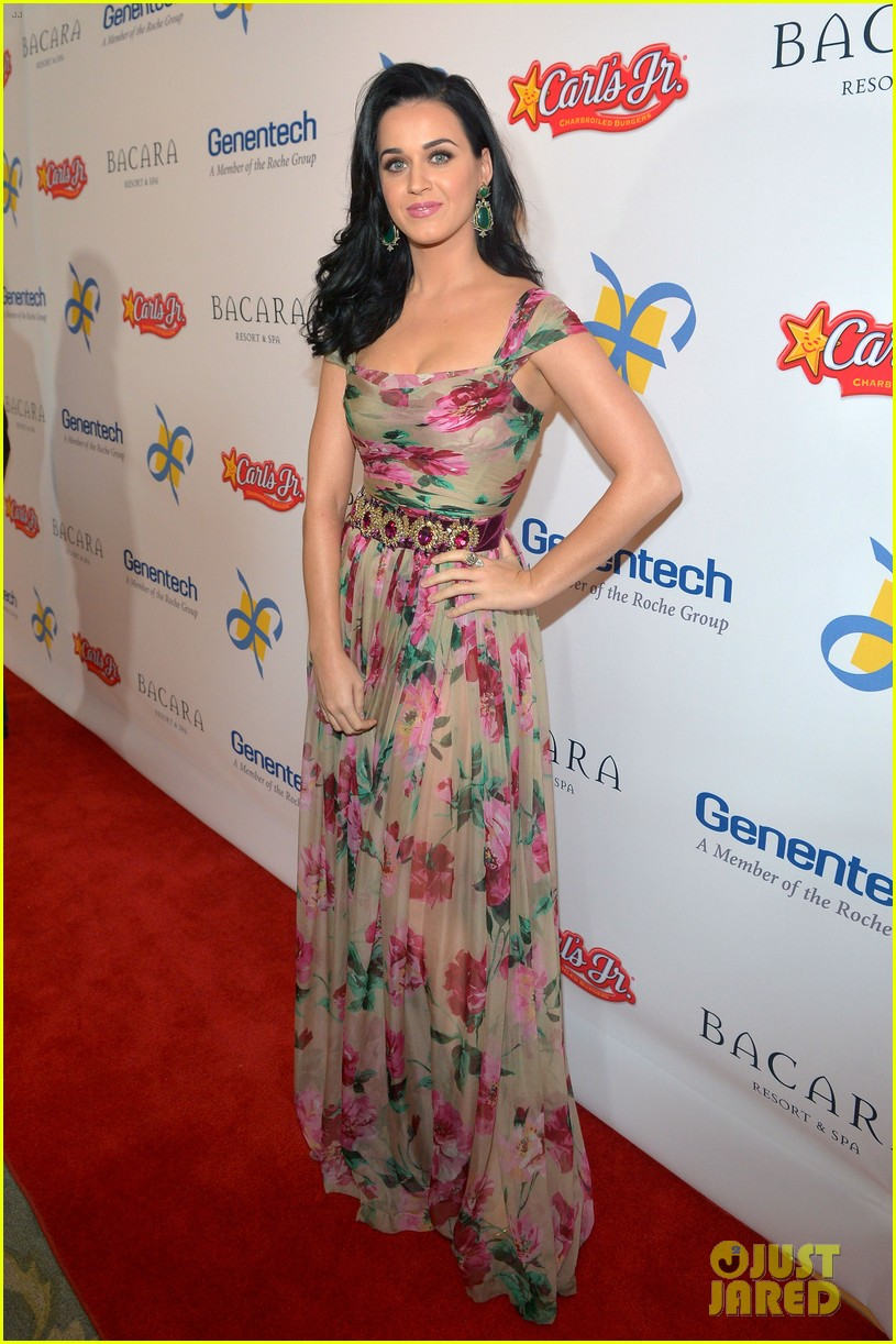 katy perry dream foundation celebration of dreams 072759250