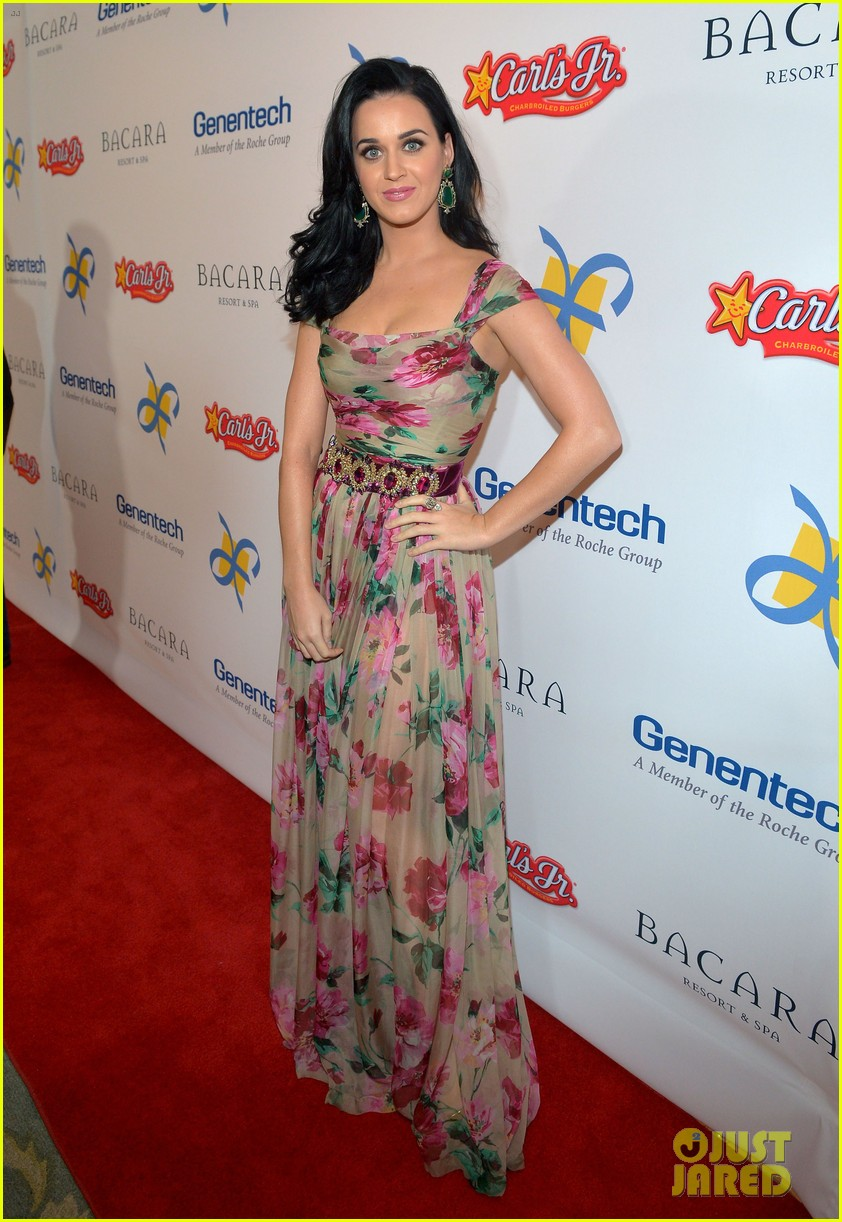 katy perry dream foundation celebration of dreams 082759251