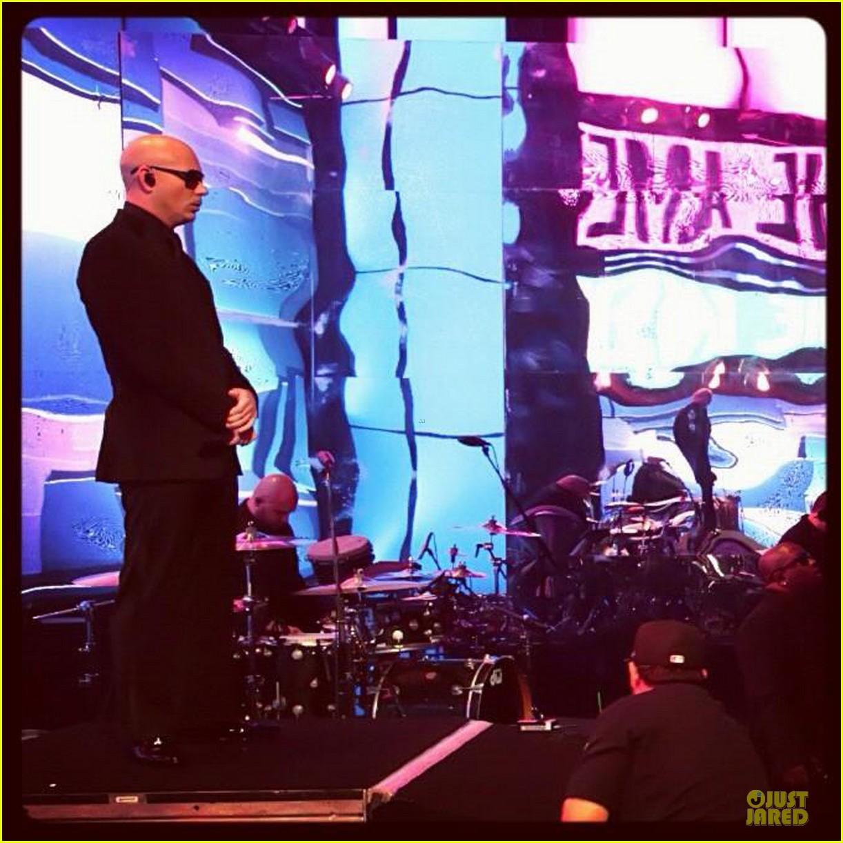 pitbull ama performance watch now 052760429