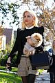 gwen stefani thanksgiving family 23