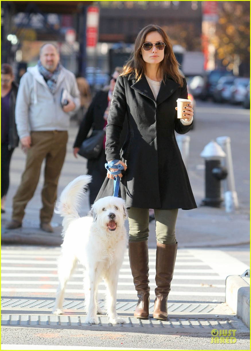olivia wilde coffee run with paco 032759584