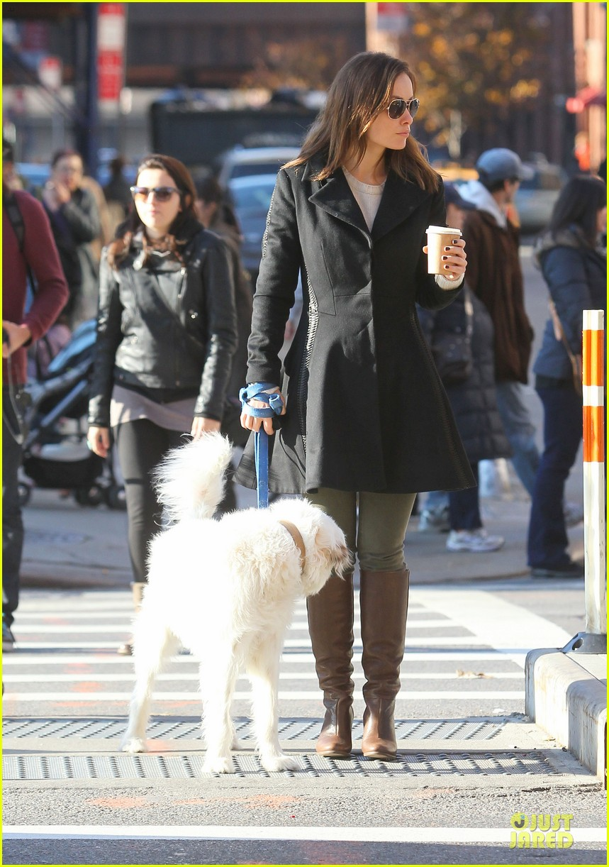olivia wilde coffee run with paco 072759588