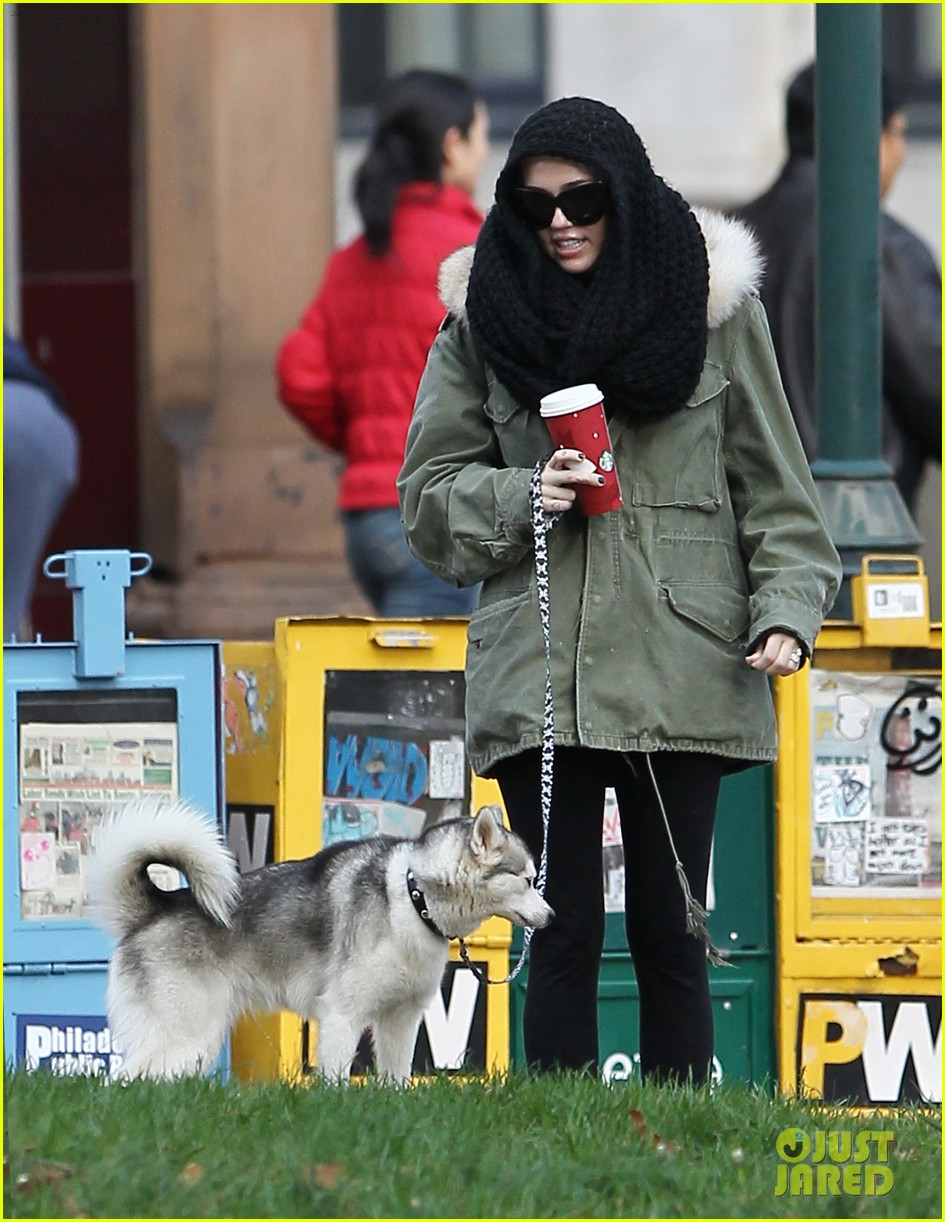 miley cyrus bundles up for philly dog walk 052777933