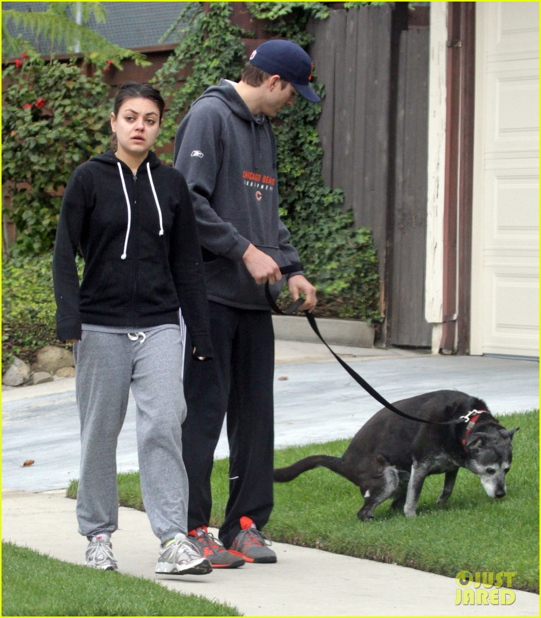 mila kunis ashton kutcher dog walk 16