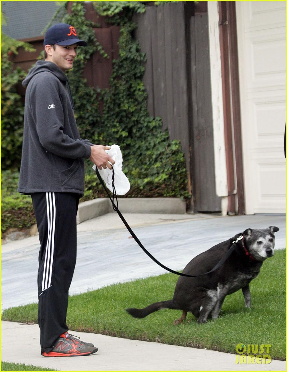 mila kunis ashton kutcher dog walk 182774905