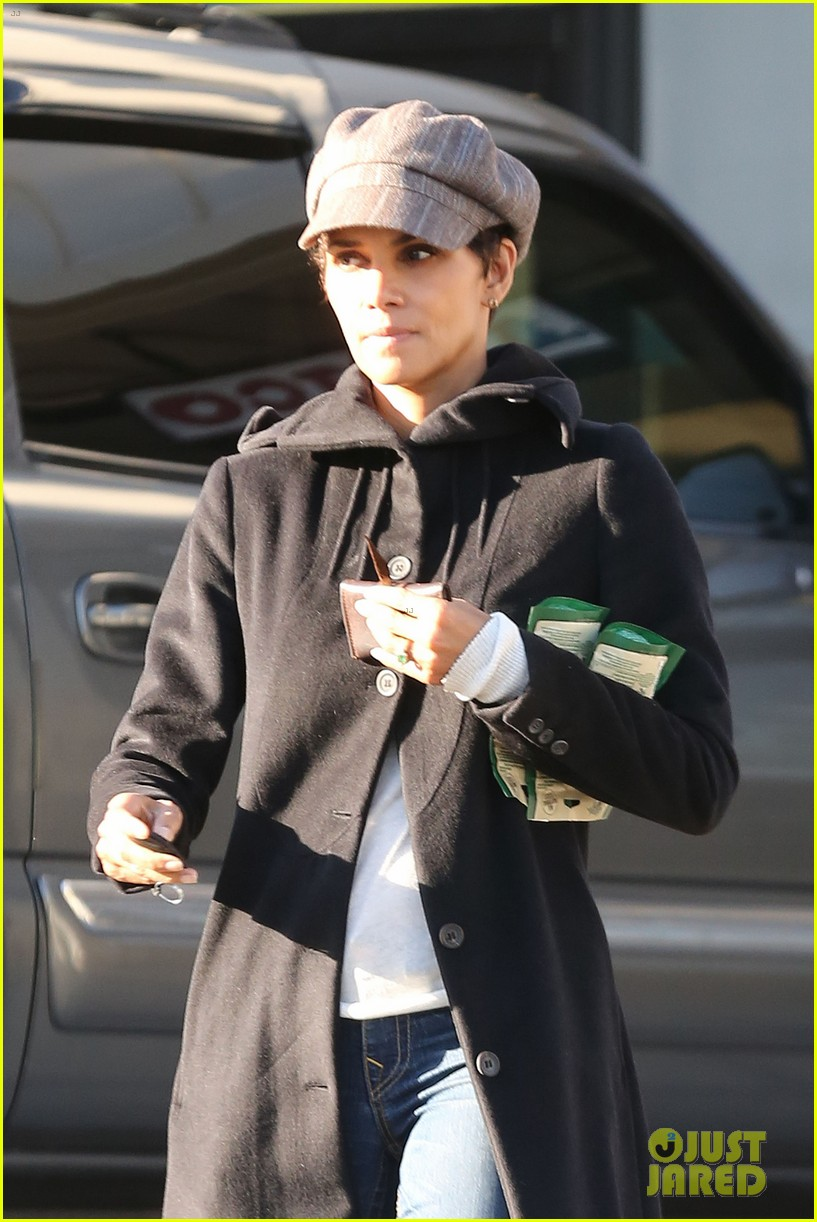 halle berry back at the vet with pet cat 022801864