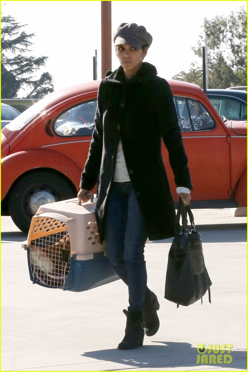 halle berry back at the vet with pet cat 07