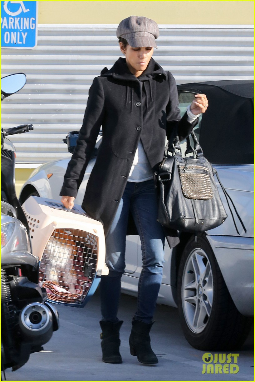 halle berry back at the vet with pet cat 082801870