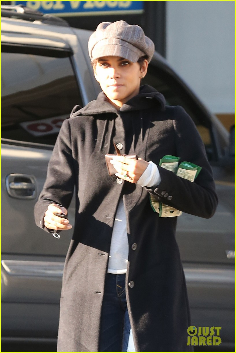 halle berry back at the vet with pet cat 092801871