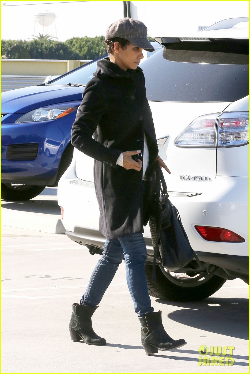 halle berry back at the vet with pet cat 132801875